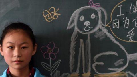 La politica cinese del cane unico fa bene ai cani – Il Foglio