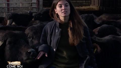 #40ANNILAV, due domande a…Giulia Innocenzi