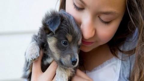 Cani per bambini: le razze più adatte a crescere con i nostri figli – PassioneMamma