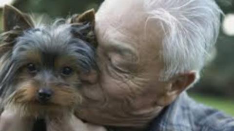 Anziani: con un animale in casa si vive meglio – Il blog giornale del … – InfoVercelli24