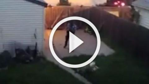 Poliziotto spara ai cani nel cortile di casa senza un motivo … – Leggo.it