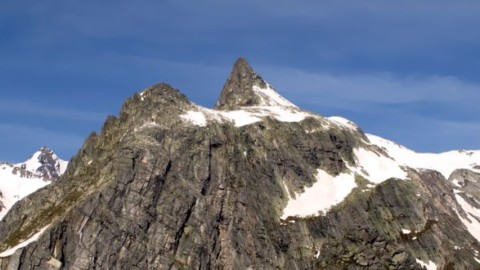 Alpi svizzere: trovato il fossile di un rettile corazzato – Meteo Web – Meteo Web