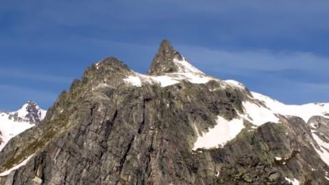 Archeologia: sulle Alpi svizzere trovato il fossile di un rettile corazzato – Meteo Web