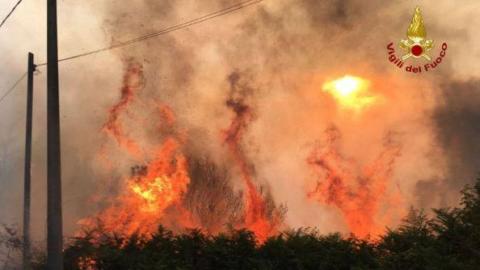 La bufala dei gatti cosparsi di benzina per gli incendi sul Vesuvio – next
