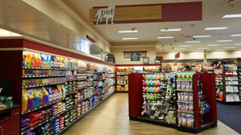 Non solo cibo nel nuovo negozio per animali: incontri con veterinari … – RavennaToday