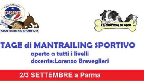 Stage di Mantrailing Sportivo Csen – La Provincia