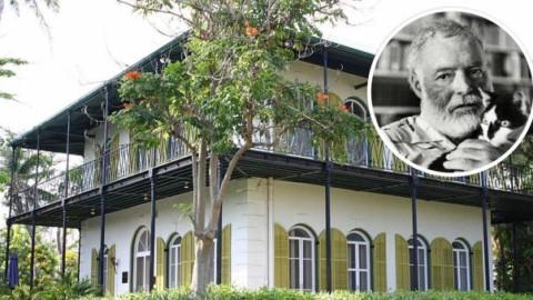 """Irma, la casa di Hemingway resta intatta: """"Salvi tutti i 54 gatti al suo … – Leggo.it"""