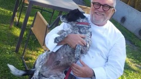 Cani e gatti abbandonati trovano casa dallo chef stellato – Adnkronos