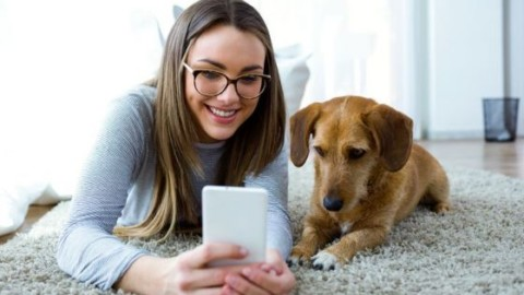 11Pets, l'app che sostituisce il libretto sanitario del pet – Sanihelp.it