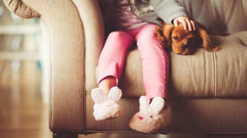 Il cane protegge dall'eczema – Galileo