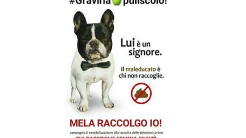 #melaraccolgoio!, contest fotografico a premi rivolto ai padroncini … – GravinaLife