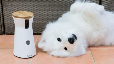 Furbo, arriva la fotocamera interattiva per animali – TecnoAndroid