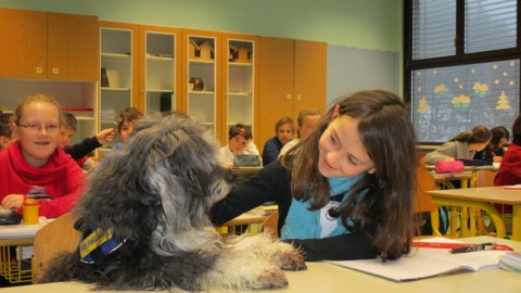Cani a scuola bimbi a lezione di educazione cinofila – Il Canavese