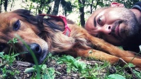Cane ritrovato dopo 20 giorni lontano da casa – Giornale di Como