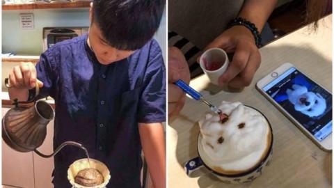 La barista che ritrae gli animali dei clienti negli incredibili cappuccini … – dissapore