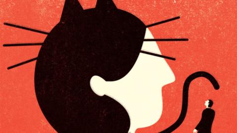 L'amore ha sette vite come i gatti – Vanity Fair.it
