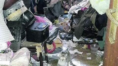 L'accumulatrice di gatti di Roma torna a colpire (PETIZIONE) – greenMe.it