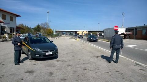 Traffico illegale di animali: gattini di razza sequestrati a Fernetti dalla … – Triesteprima.it