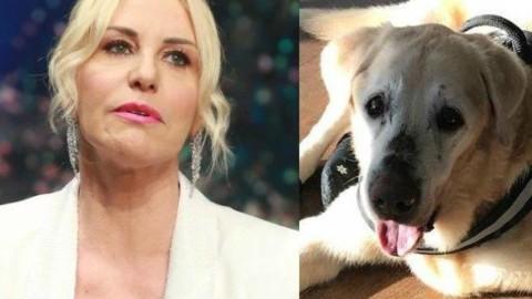 Il dolore di Antonella Clerici per la morte del cane Oliver: «Sei stato … – Corriere della Sera