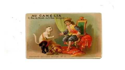 """Al museo postale la mostra """"A tutto gatto"""": dalle cartoline vintage all … – Triesteprima.it"""
