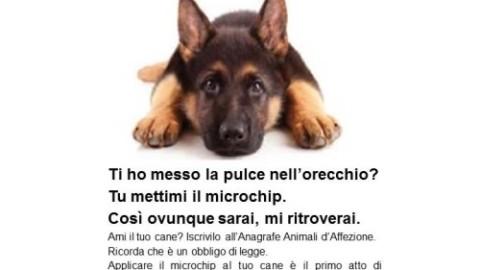 Potrei perderti, campagna Ministero Salute possesso animali d … – Quotidiano Prevenzione