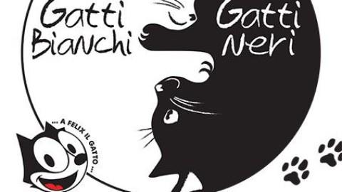 Le città dei gatti: eventi e mostre dedicate ai felini a Roma e Milano – FoxLife