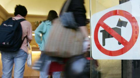 Quincinetto (To) vieta l'accesso ai cani in bar, ristoranti e alimentari … – Il Sole 24 Ore
