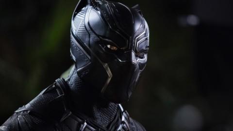 Fenomeno Black Panther: aumentano le adozioni di gatti neri in USA – FoxLife