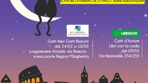 Roma città dei gatti – RomaToday