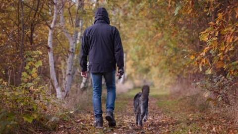 Se sei ansioso rischi di più di essere morso da un cane: rilassati – Scienze Fanpage