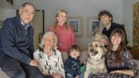 Chi sono i più tassati della famiglia? Cani e gatti – Quotidiano.net