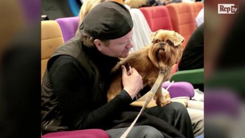Irlanda, al cinema con il cane: l'iniziativa è un successo – La Repubblica
