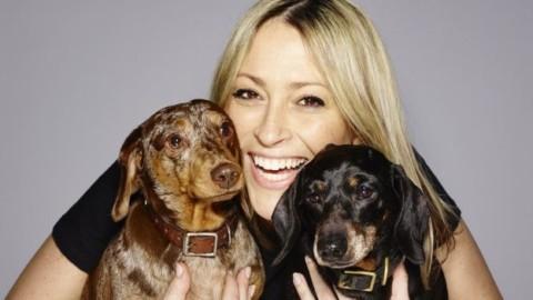 PetScene: nasce il social network per cani e gatti – DeAbyDay.tv – DeAbyDay.it (Blog)