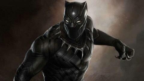 Gatti neri: aumentano le adozioni grazie al film Black Panter della … – greenMe.it