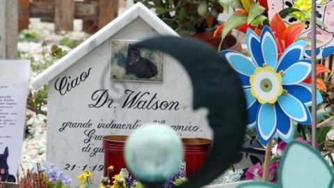 Cani e gatti seppelliti in giardino, il Veneto dice sì. Zaia: «Atto d … – Corriere della Sera