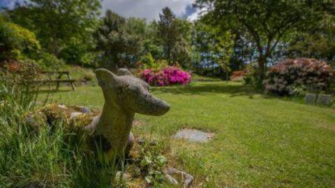 Animali domestici, via libera del Veneto alla sepoltura in giardino – www.amoreaquattrozampe.it (Blog)