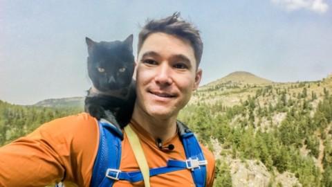 Simon, il gatto avventuroso in viaggio per il mondo – Vanity Fair.it