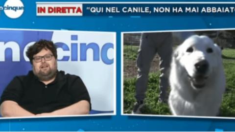 Mario Adinolfi contro il cane Miro: ''Prima dei diritti degli animali ci … – il Dolomiti