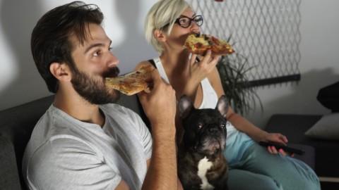 Netflix: gli animali domestici sono i partner ideali per guardare le … – RADIO DEEJAY