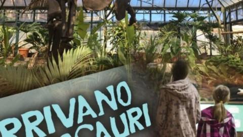 Arrivano i dinosauri in Sicilia – Blasting News