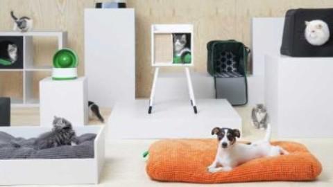Collezione Ikea per animali domestici: arredi e accessori – Lavorincasa.it (Comunicati Stampa)