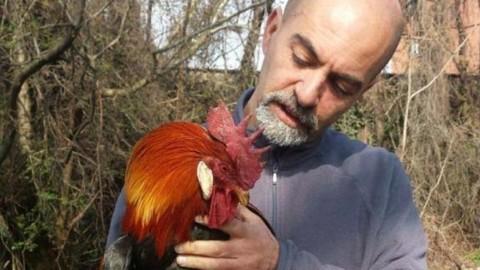 Torna l'«acchiappa-animali», l'idolo delle gattare (e non solo) – Corriere della Sera