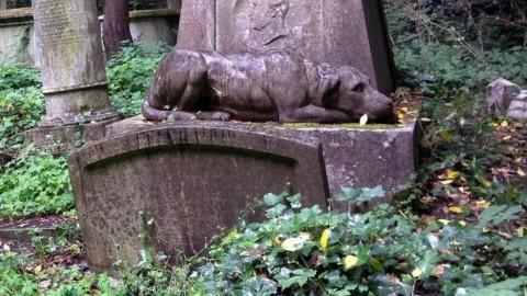 In Veneto sarà possibile seppellire Fido in giardino – il mattino di Padova