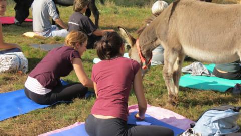 Agenda animale, gli appuntamenti del weekend del 5-6 maggio 2018 – Il Sole 24 Ore