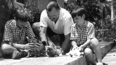 Roberto Malini legge I gatti di Ernest a Nervi – mentelocale.it