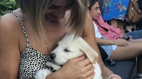 Lara, la cucciola nata dal cane sepolto vivo. «L'abbiamo adottata … – Corriere della Sera