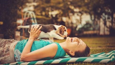 Ecco perché avere un cane rende felici e fa perfino bene alla salute – La Repubblica