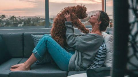 Cani e gatti: i benefici del massaggio – GreenStyle