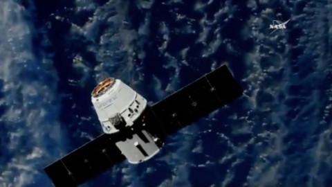 L'ultimo volo del Falcon 9 Block 4: ha portato sulla ISS un'AI e due gatti – Focus