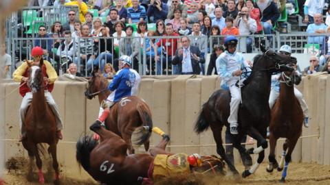 Strappati 50 manifesti LAV con la foto della caduta di un cavallo durante il Palio di Asti